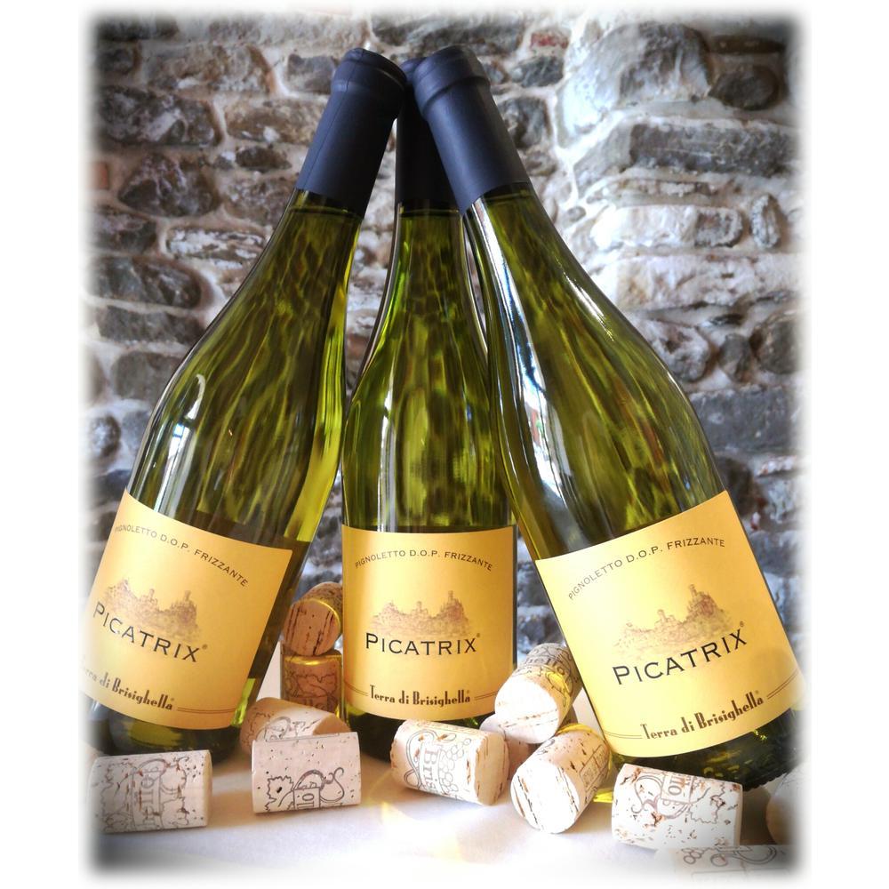 Wine Picatrix®